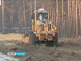 В Воронеже по ночам расчищают площадки в лесах под автомойки