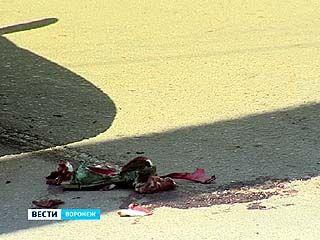 В Воронеже под колеса полицейского экипажа попала школьница