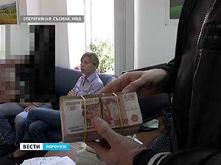 В Воронеже полиция задержала 11 подпольных банкиров - против кого они дают показания?