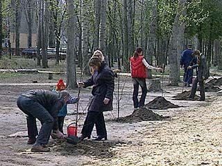 В Воронеже появится новая аллея