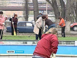 В Воронеже прошел масштабный общегородской субботник