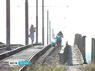 В Воронеже прошёл фотосубботник