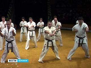 В Воронеже прошёл шестой традиционный фестиваль боевых искусств