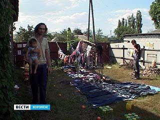 В Воронеже прошла свободная ярмарка