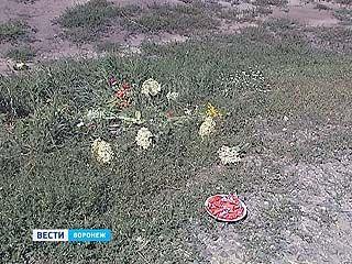 В Воронеже прошли похороны 3-месячного мальчика, сбитого пьяной девушкой