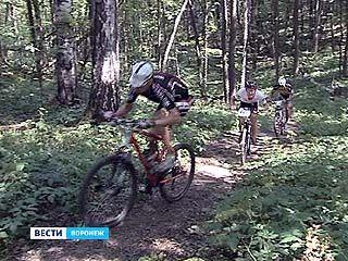 В Воронеже прошли соревнования по маунтайнбайку