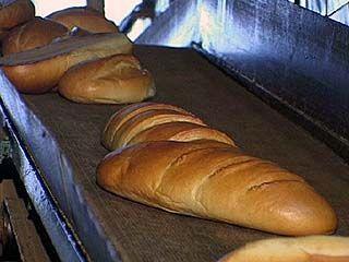 В Воронеже родится хлеб нового поколения
