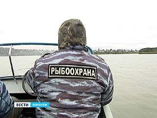 В Воронеже рыбинспекторы начали охоту на браконьеров