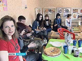 В Воронеже снова открылось неко, или в переводе кото-кафе