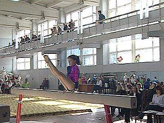 В Воронеже состоялся чемпионат по спортивной гимнастике