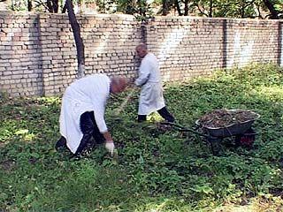 В Воронеже стартовала антикризисная программа занятости населения