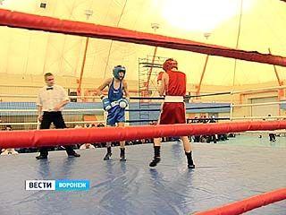 В Воронеже стартовало Первенство ЦФО по боксу среди юношей