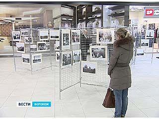В Воронеже в одном из торговых центров открылась необычная выставка