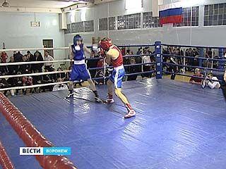 В Воронеже завершился чемпионат города по боксу