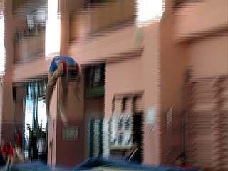 В Воронеже завершился чемпионат ЦФО по прыжкам на батуте