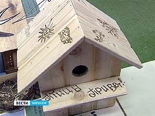 """В Воронежском биосферном заповеднике прошел """"День птиц"""""""