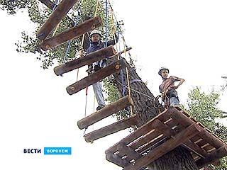 """В воронежском парке """"Южный"""" на деревьях вырос веревочный городок"""