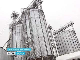 В Воронежском регионе открыли современный элеватор для хранения зерна