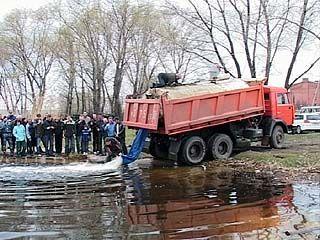 В Воронежском водохранилище появились новые жители
