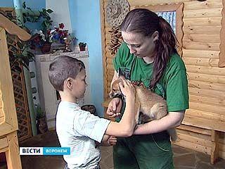 В Воронежском зоопарке открылся контактный зал
