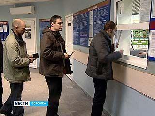 В Воронежской автоинспекции начали выдавать права нового образца