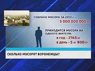 В Воронежской области будет создано восемь мусороперерабатывающих комплексов