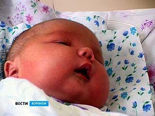 В Воронежской области бум рождения богатырей