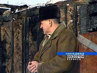 В Воронежской области имущество страхуют чаще, чем жизнь