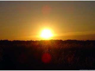 В Воронежской области местами ожидается до 37 градусов тепла