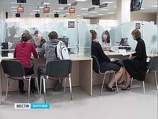 В Воронежской области началась борьба с бюрократией