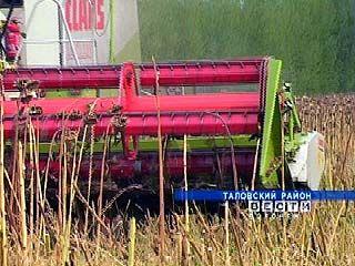 В Воронежской области началась уборка подсолнечника