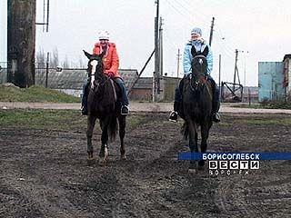 В Воронежской области образована федерация конного спорта