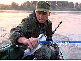 В Воронежской области открыт самый длинный в году летне-осенний сезон охоты