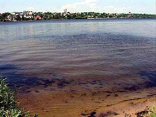 В Воронежской области открыто 61 официальное место для отдыха у воды