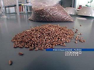 В Воронежской области заканчивается уборка зерновых