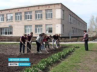 Верхнемамонские школьники стали лучшей ученической бригадой России