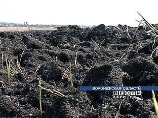 Весенне-полевые работы обойдутся в 3 млрд. рублей