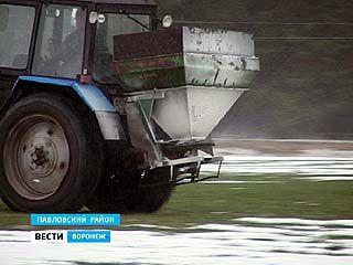 Весенние полевые работы в Воронежской области уже в разгаре