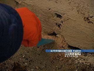 Ветеринарная служба воюет с грызунами в Бутурлиновском районе