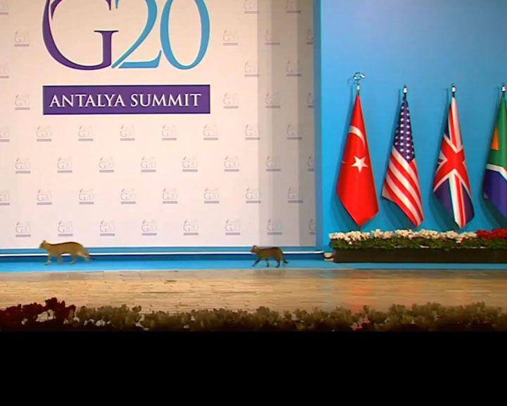 ВИДЕО: На саммите глав 20 мировых держав трое неожиданных гостей самовольно вышли на сцену