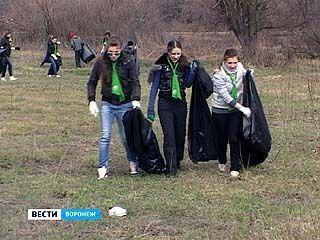 Во Всемирный день земли воронежские школьники наводили порядок на берегу Усманки