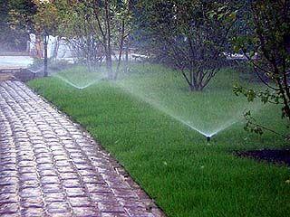 """""""Водоканал"""" просит воронежцев поливать огороды по ночам"""