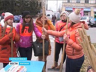 Волонтёры на скорость помогали борисоглебским пенсионерам по хозяйству