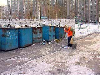 Воронеж может остаться без дворников