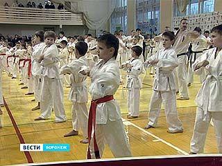 Воронежская федерация киокушинкай каратэ отметила 10-летие