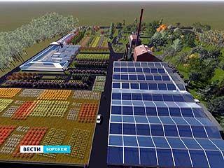 Воронежская лесотехническая академия создаёт уникальный питомник