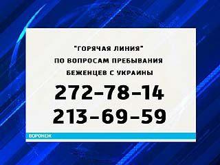 Воронежская область может рассчитывать на субсидии для размещения беженцев