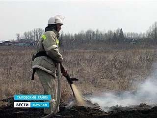 Воронежская область не успела отойти от паводка, как на смену ему пришли пожары