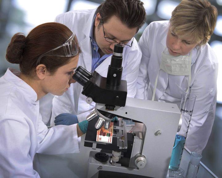 Воронежская область в рейтинге зарплат научных сотрудников