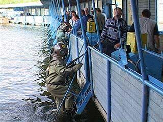 Воронежская водолазная школа закрыта
